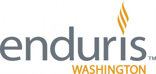 enduris_plain_logo_color